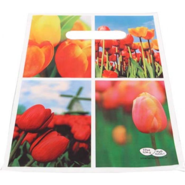 Image de 10000 pcs. Sac en plastique personnalisé publicitaire 20x30 cm Quadrichromie